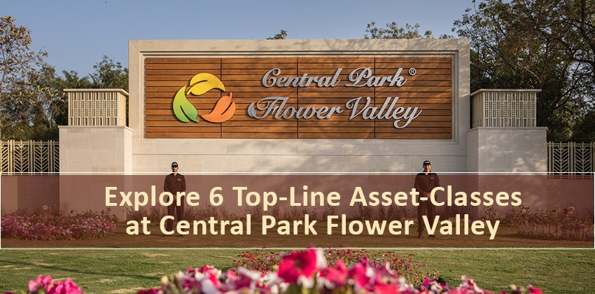 Explore 6 Top-Line Asset-Classes at Central Park Flower Valley